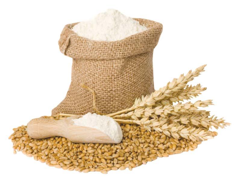sindh food dept blamed for lagging in wheat procurement