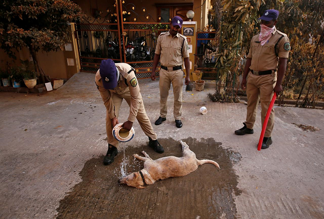 a policeman tries to revive a dog near the site of the lg polymers plant following a gas leak at the plant in visakhapatnam india may 8 2020 photo reuters
