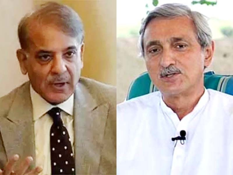 tareen shehbaz find fault with findings