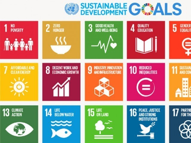 Vow to lead process for generating national response for achieving development goals