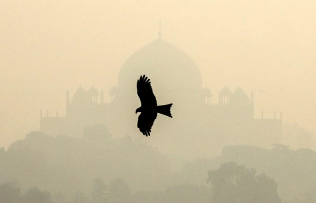 significant drop in air pollution amid lockdown
