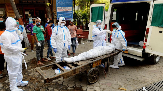 india reports highest single day spike in virus cases