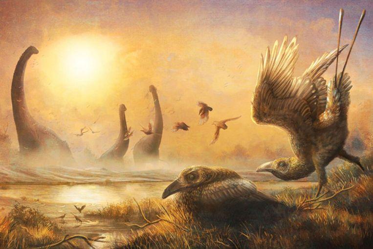 Dinosaur-era bird with scythe-like beak sheds light on avian diversity