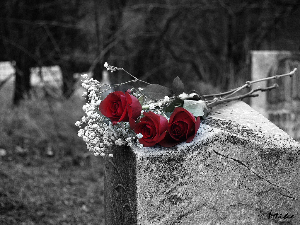 I don't think I've ever cried as much as I cried seeing the attendees put roses on his grave, one by one. PHOTO: FLICKER/Explorer Tresspasser