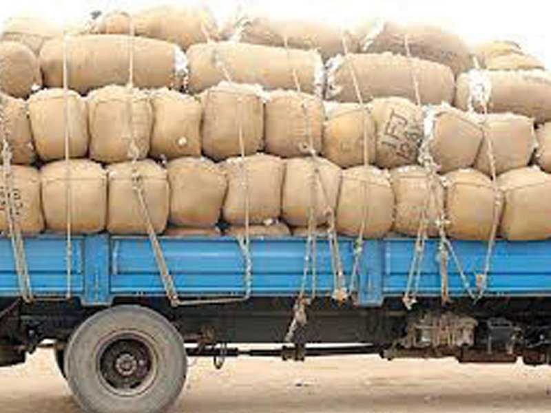 In Punjab, ginning factories got 8.35 million bales, down 13% and in Sindh, the ginning units received 3.24 million bales, up 35%. PHOTO: FILE