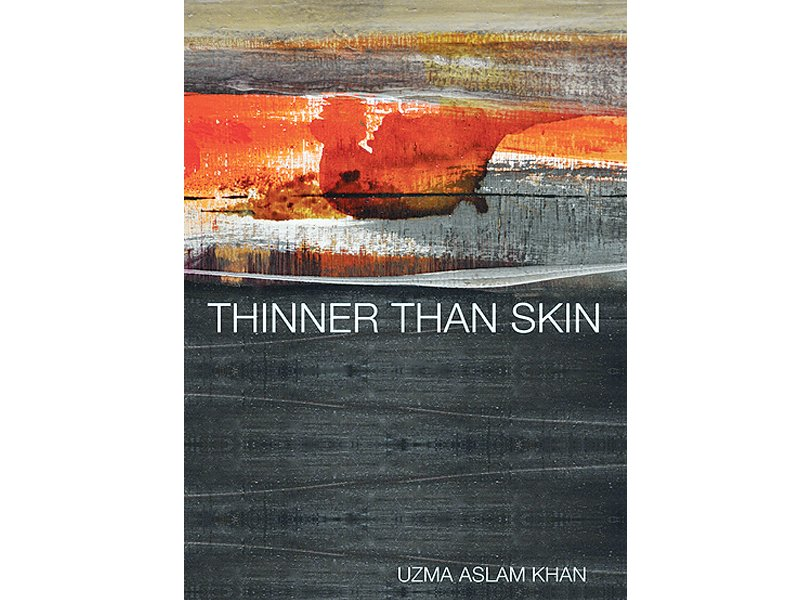 book review thinner than skin   broken images