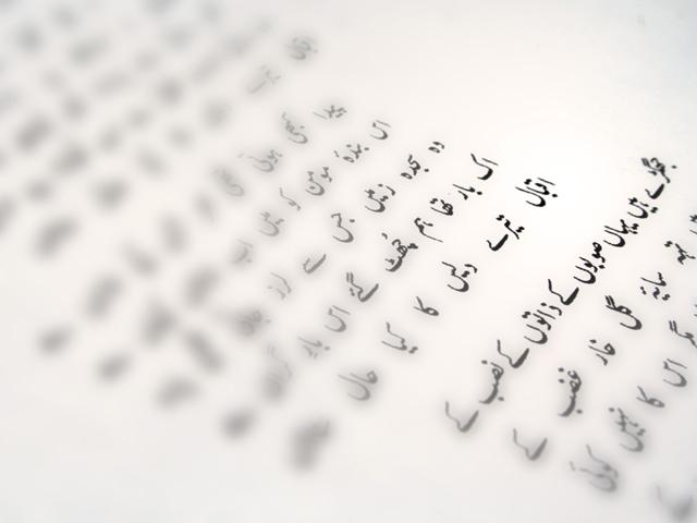 to make urdu a self dependant language we must become a self dependant nation first arfa sayeda zehra