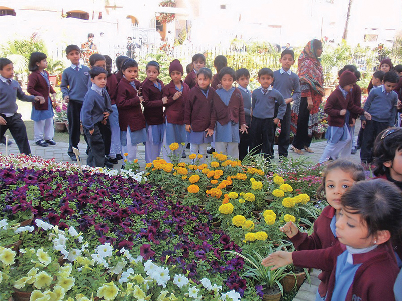 The flower festival started on February 26 and already 1,500 people have visited the show. PHOTO: EXPRESS