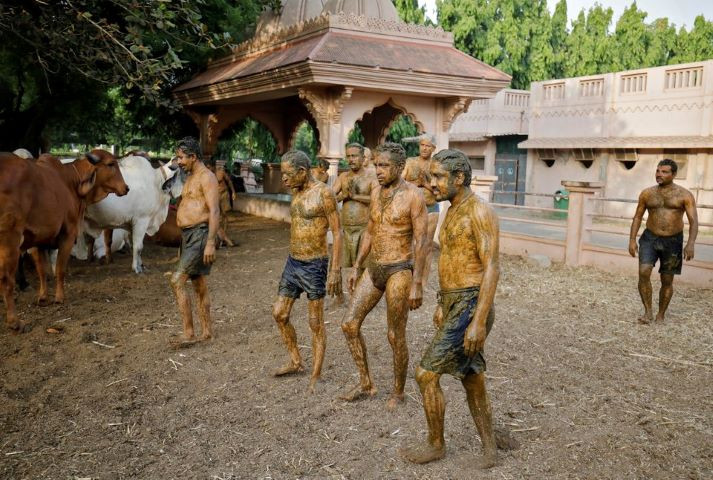 People walk after applying cow dung on their bodies during