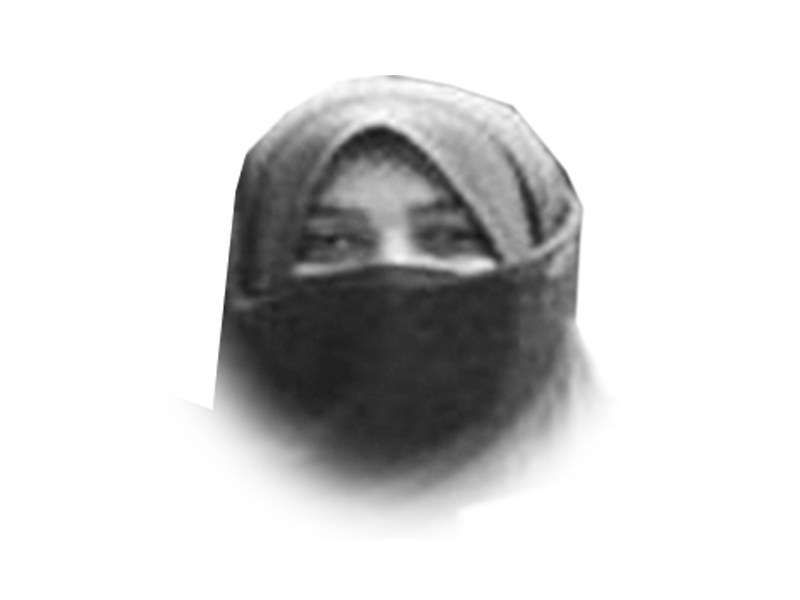 the writer teaches literature islamic studies and sociology in lahore she is also a social worker leading a project for virtual education for underprivileged schoolchildren