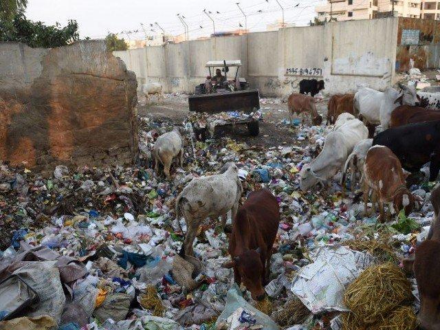 Pakistan's Karachi, a megacity of 20-25 million people, produces roughly 12,000 tonnes of trash daily Pakistan's Karachi, a megacity of 20-25 million people, produces roughly 12,000 tonnes of trash daily. PHOTO: AFP