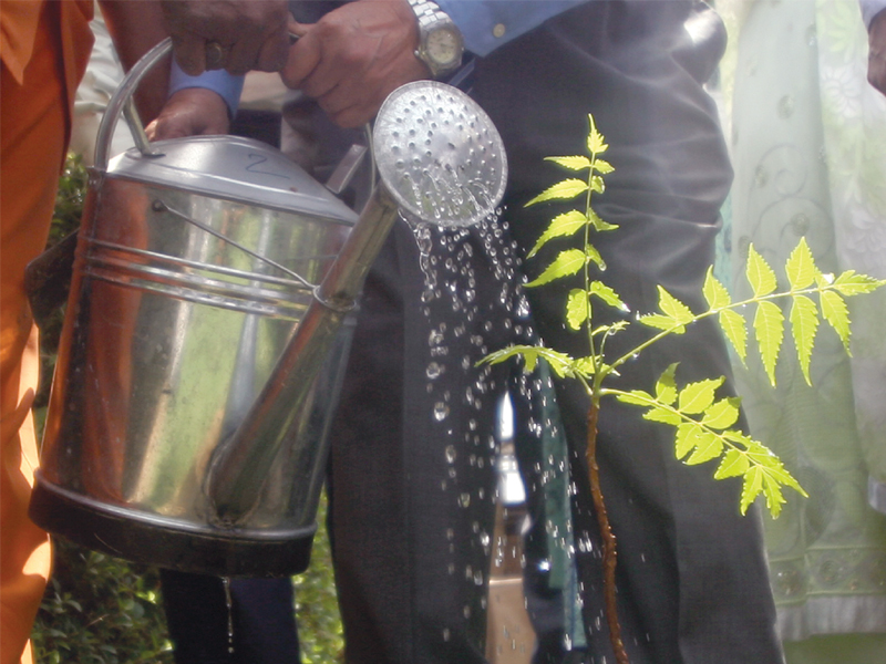 WWF-P and a healthcare company, PharmEvo, have launched a nationwide environmental drive as a part of which five new Neem trees were planted in Ziauddin Hospital on Thursday. A general physician, Dr Ejaz Vohra, watered one of the tree saplings. PHOTO: ATHAR KHAN/EXPRESS