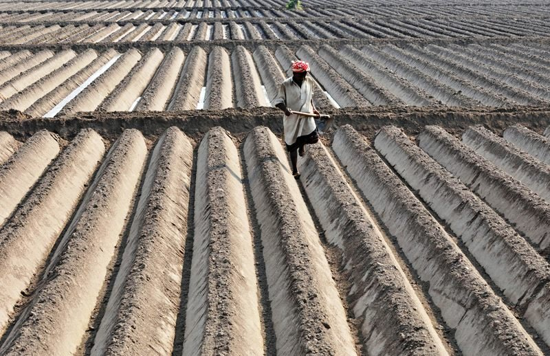 pakistan has 2 6 million acres of cultivable land which if divided into five acre lots could create assets for country s 897 000 tenant farmers says akmal hussain photo afp file