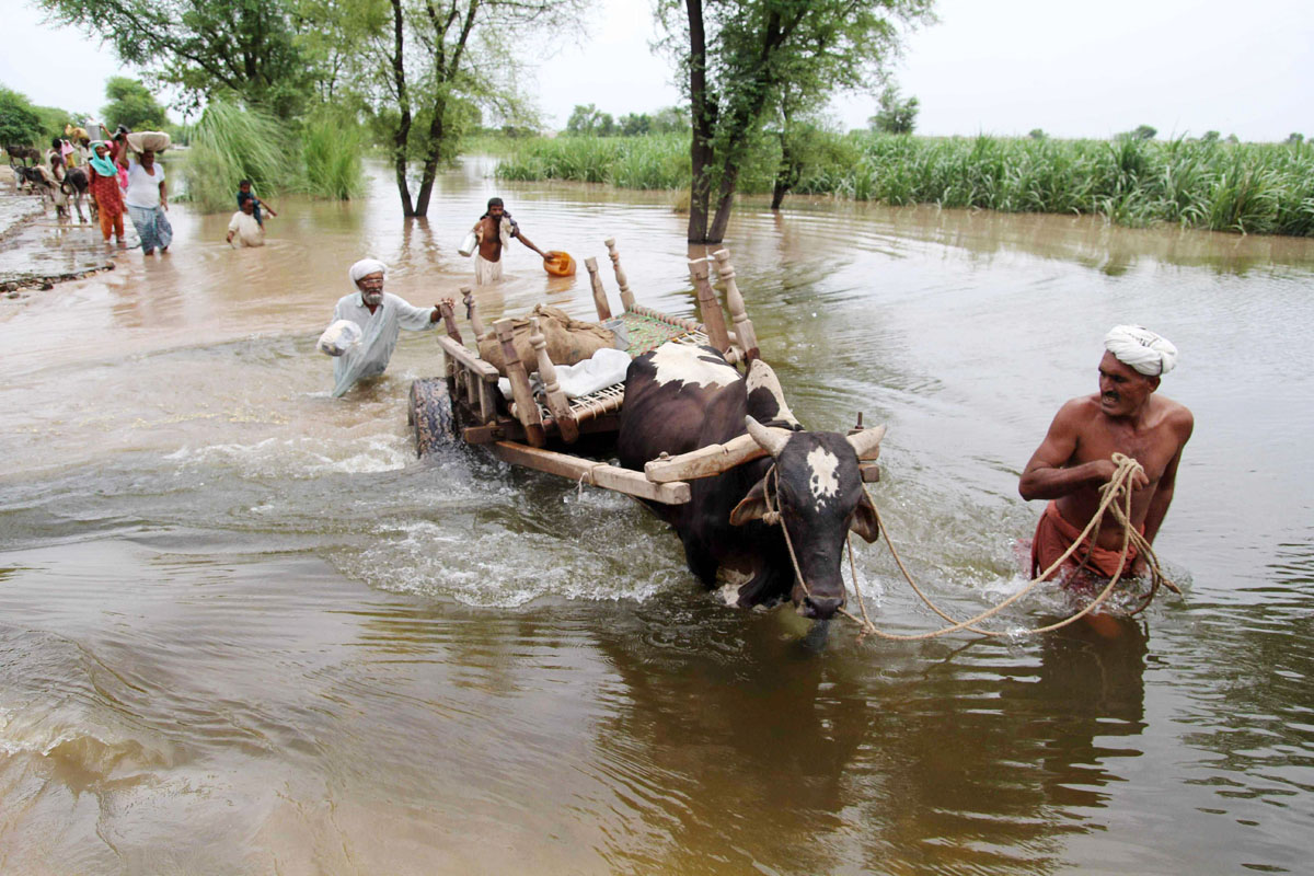 flood affected villagers wade through floodwaters as they evacute their homes at sadat wala near multan on august 16 2013 photo afp