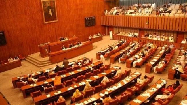 upper house anti privatisation walkout in senate