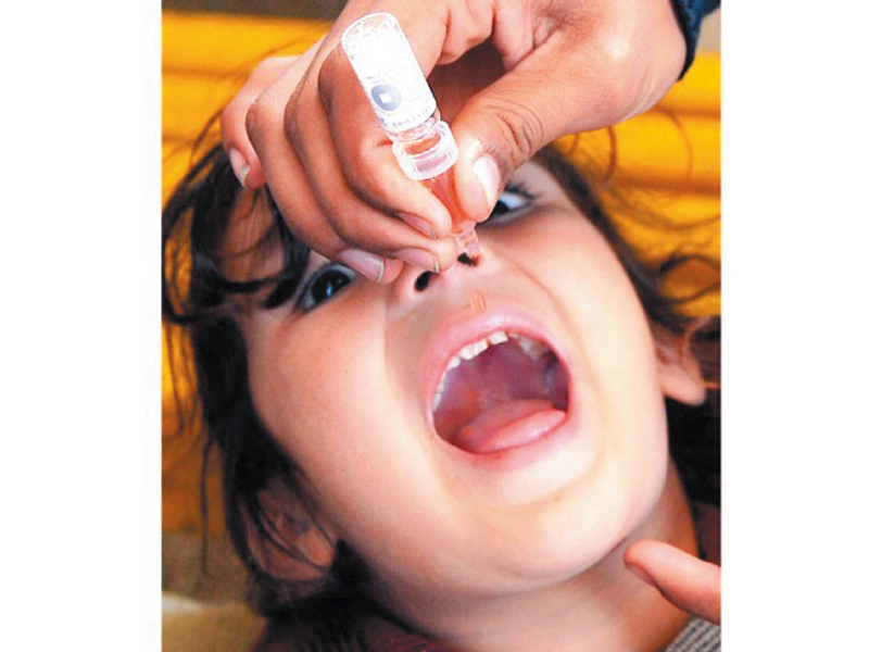 a pakistani polio vaccination worker administers vaccine drops to a young girl in peshawar photo afp