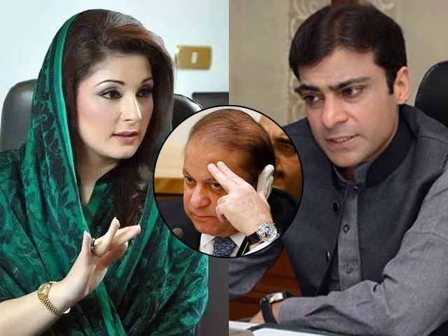 If Hamza plays his cards right, he can easily oust Maryam and become the future of PML-N.