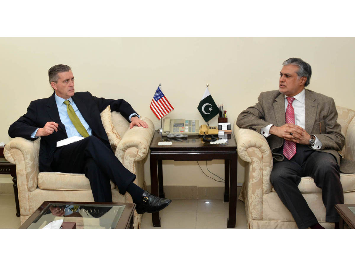 US Ambassador Richard Olson met Finance Minister Ishaq Dar on January 24, 2014. PHOTO: PID
