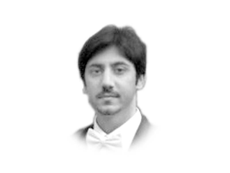 the writer is currently special assistant to the federal minister at the ministry of planning development and reforms he tweets hnadim87