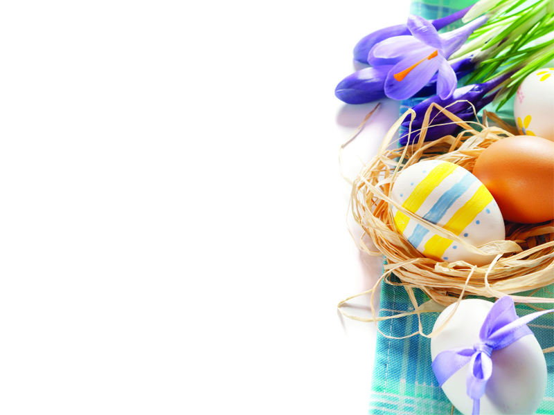 festivities have an egg ceptional easter