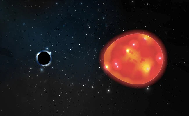 a black hole located approximately 1 500 light years from our solar system discovered in the constellation monoceros pulls at a nearby red giant star distorting its light in an undated illustration ohio state illustration photo reuters