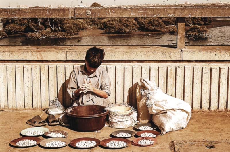 childhood lost pakistan s underage workforce
