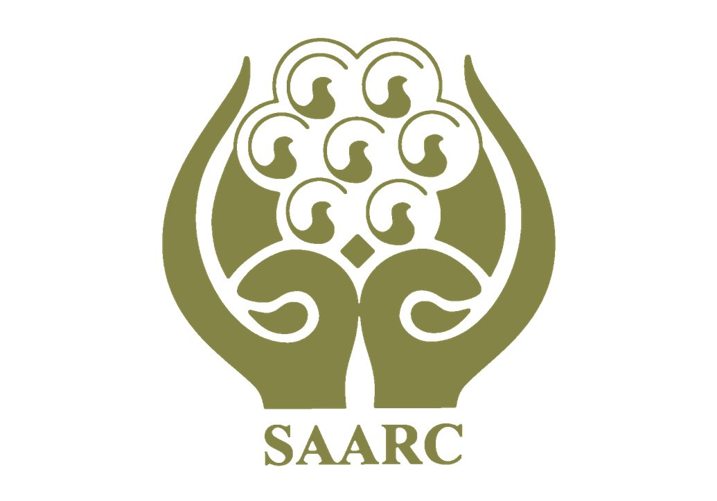 ipri president advocates full saarc membership for china photo online