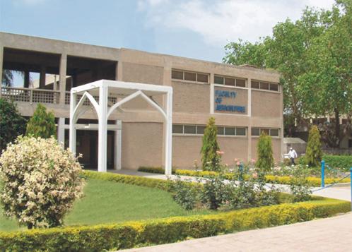 university of agriculture in faisalabad photo uaf edu pk