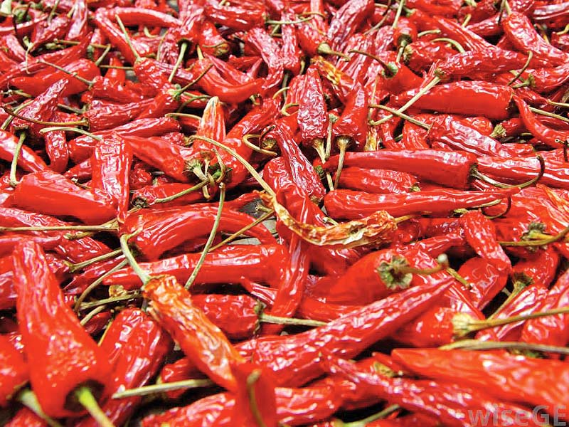 spice intake linked with lower risk of fatal diseases