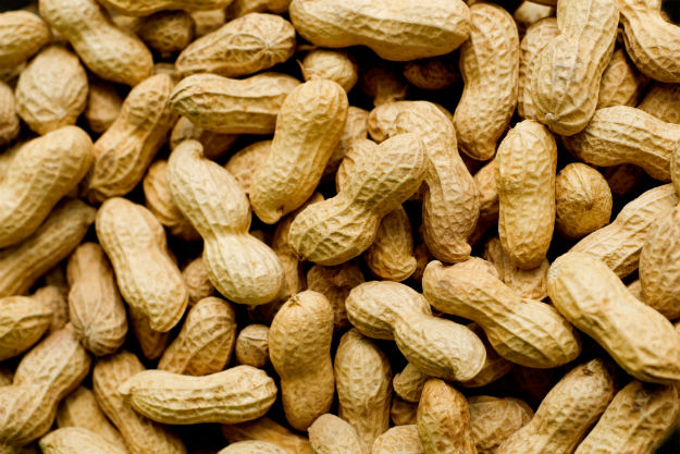 want to cure peanut allergies here s how
