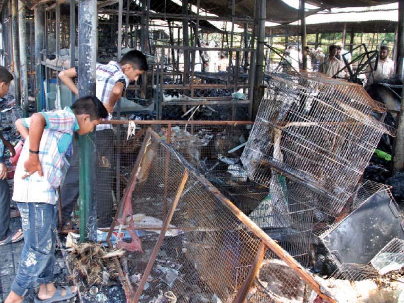 inferno 58 shops gutted in model bazaar fire
