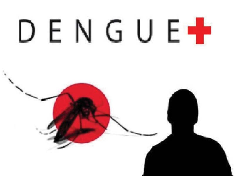 soaring numbers in rawalpindi 48 more dengue cases reported