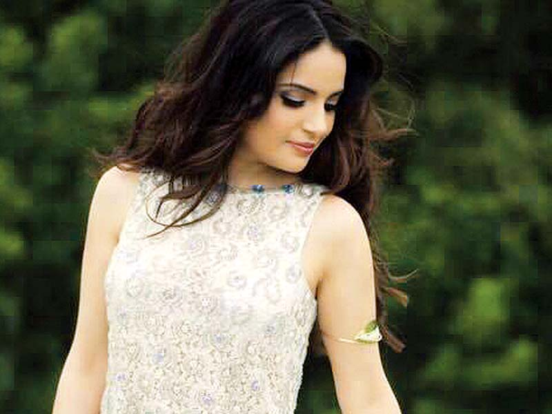 The film features an ensemble cast, including Armeena Rana Khan. PHOTO: FILE