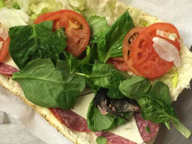 dead rat found in subway sandwich in us