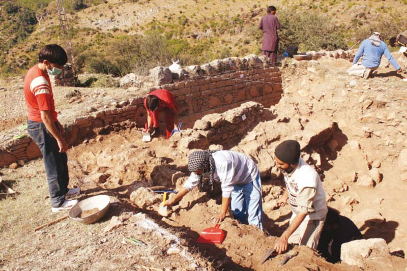 student participants in the bhamala excavation 2014 15 photo courtesy directorate of archaeology amp museums government of khyber pakhtunkhwa