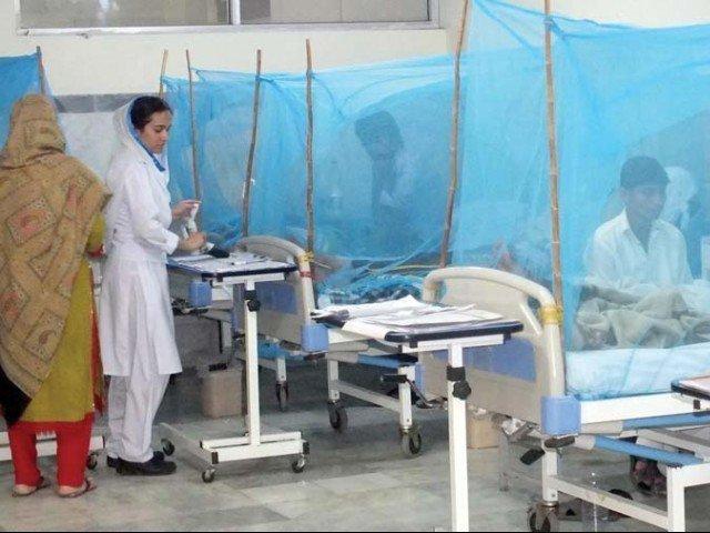 pindi braces for wave of dengue infections