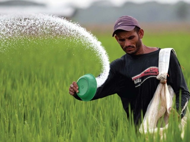 Will facilitate provinces in depositing their share of fertiliser subsidy. PHOTO: REUTERS