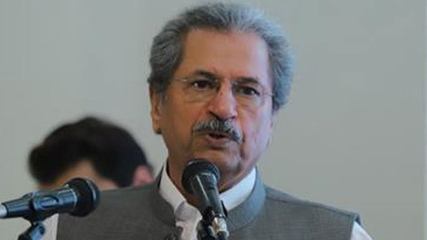 federal minister for education shafqat mahmood photo rp