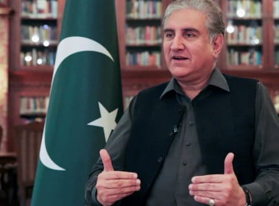 qureshi extols historic pakistan uae friendship terms it special