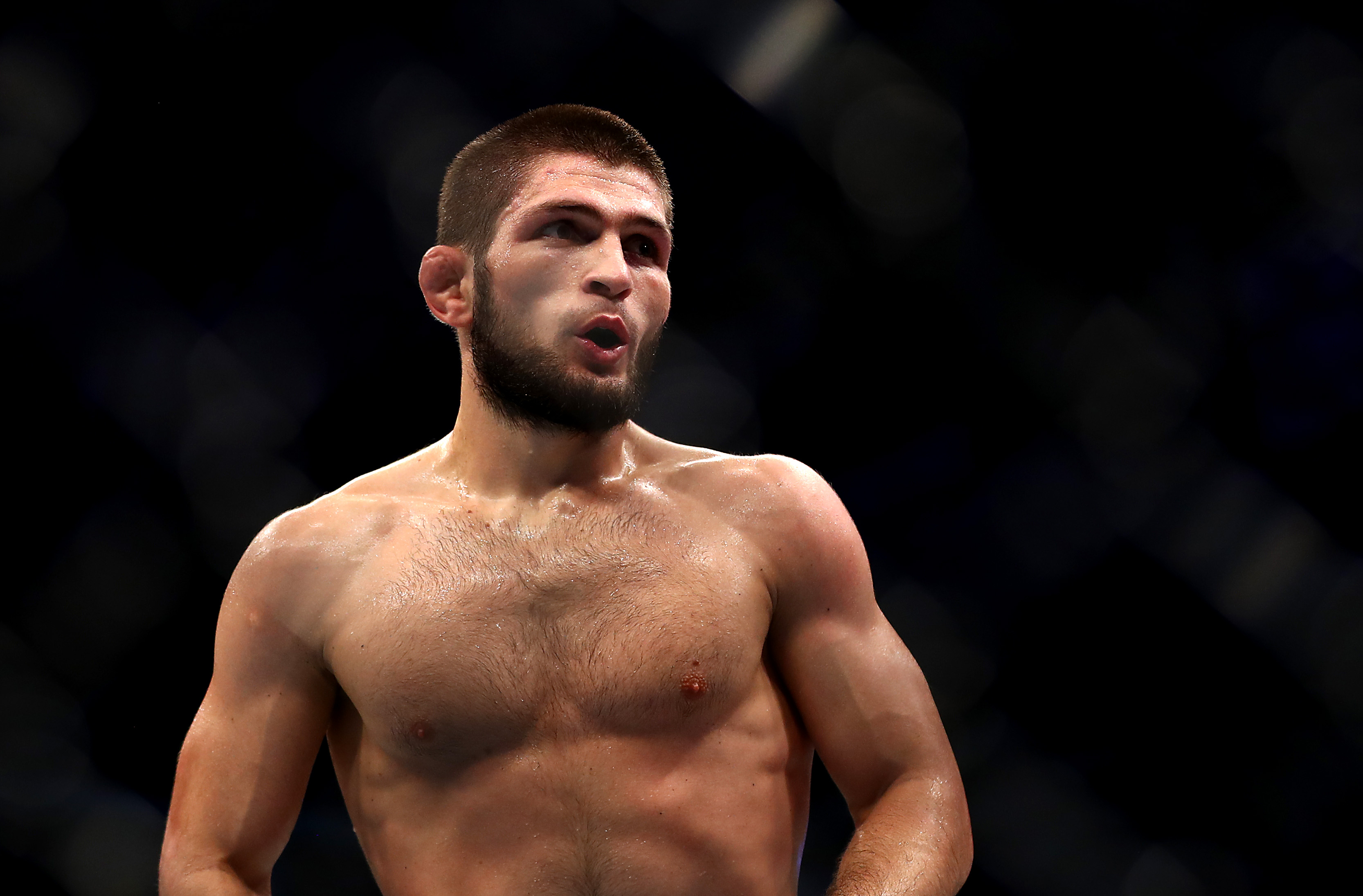 nurmagomedov to face gaethje in october says ufc s white