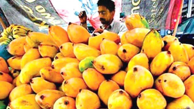 pakistani mangoes fetch better prices