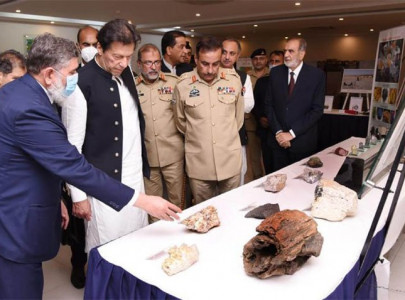 pakistan s nuclear strategic capability safe secure pm imran
