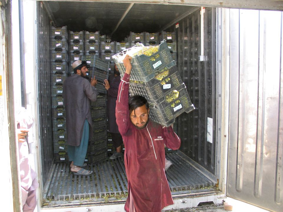 Labourers offload crates of grapes off a truck from Afghanistan at the Friendship Gate crossing point, in the Pakistan-Afghanistan border town of Chaman. PHOTO: REUTERS