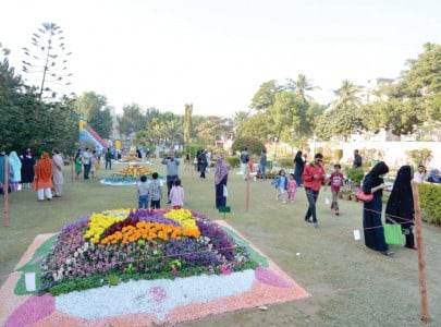 celebration of colours and fragrances