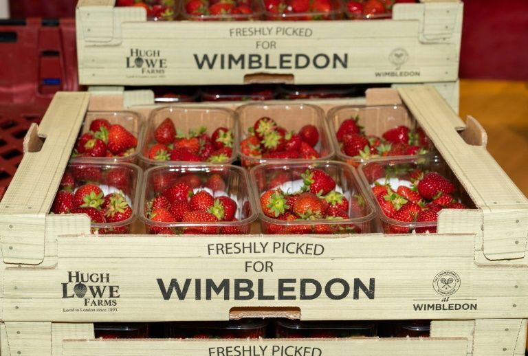 no wimbledon gives food for thought