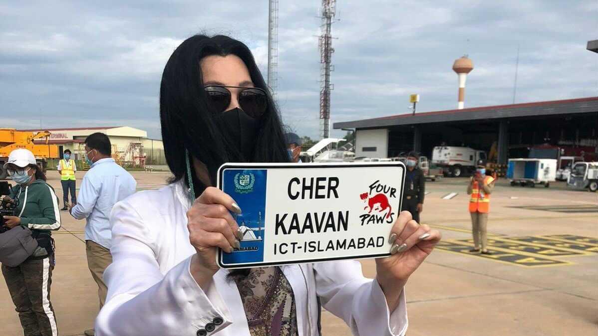 Cher in Pakistan to send off Kaavan the elephant