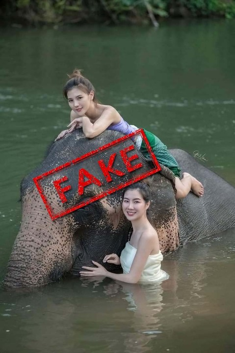 tribune fact check kaavan poses with models in cambodia
