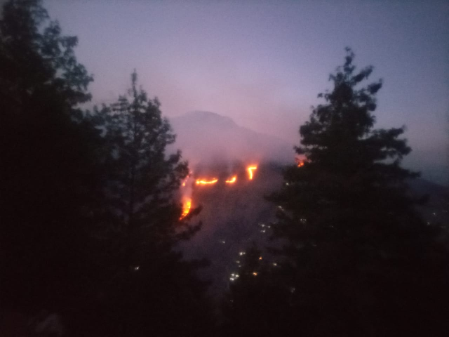 fire incidents are a common phenomenon in the forest range of galyat photo express