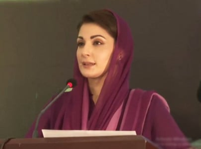 shehbaz would have become pm if he was disloyal to nawaz maryam
